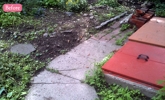 Somerville backyard sanctuary